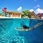 Фото наполовину сделанные под водой.
