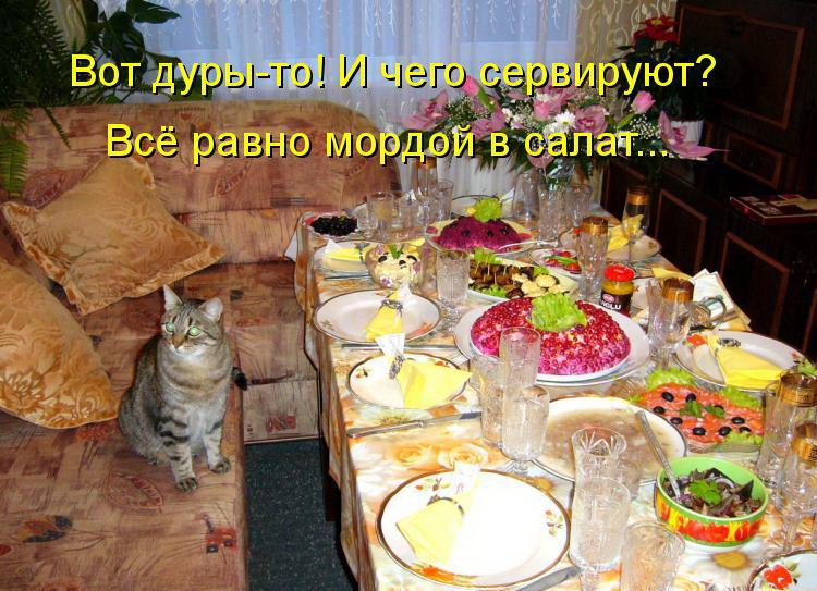 Это не еда милый мой это закуска хорошо сидим