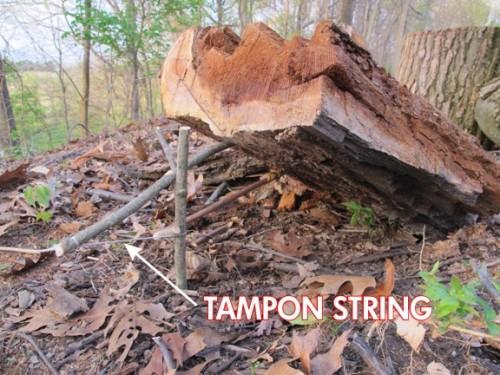 Как можно использовать тампон для выживания