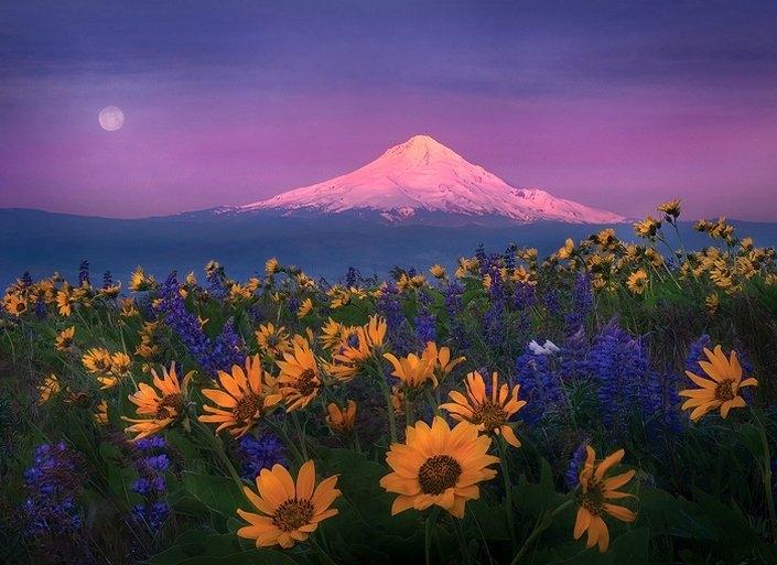 Великолепные и красивые Пейзажи нашей природы...часть 1