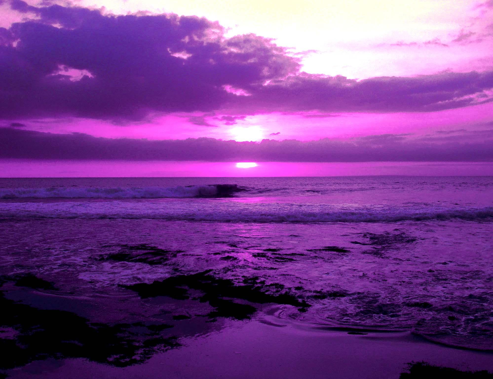 картинки фиолетового цвета фото самой востребованной одеждой