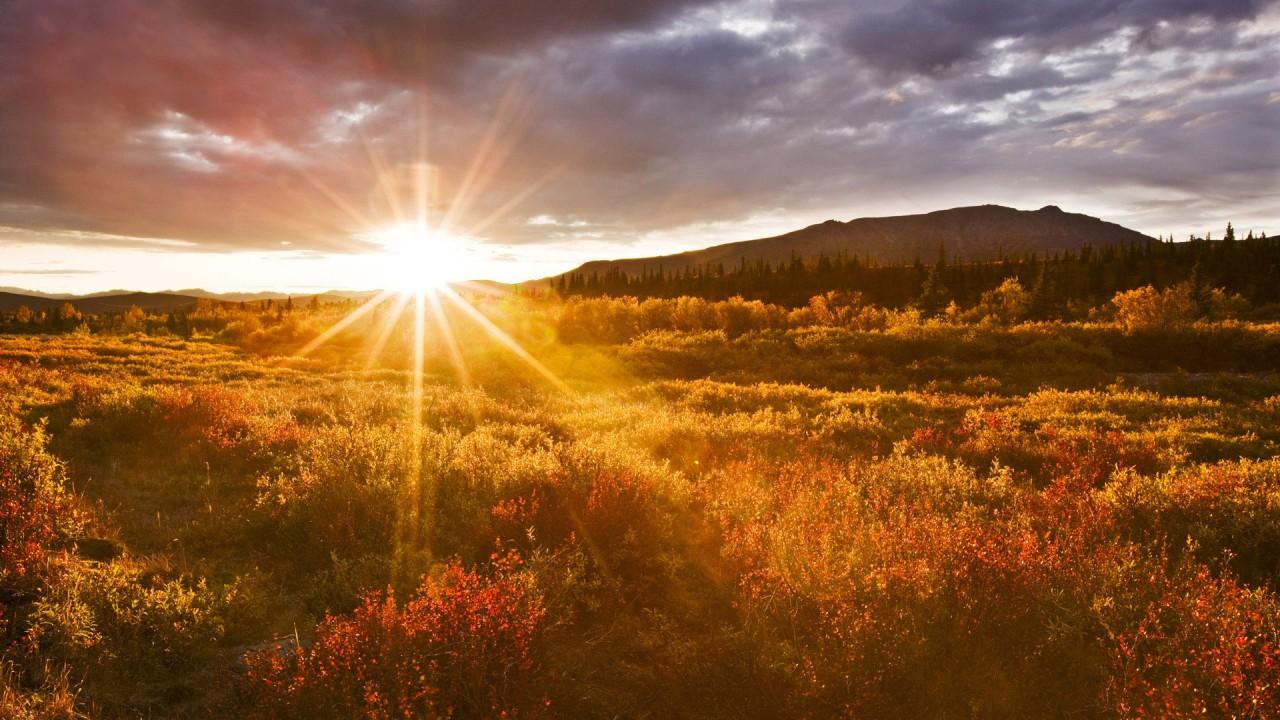 Восход солнца, фото
