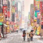 Япония интересные факты и то, чего Вы не знали