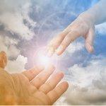Договор о сотрудничестве с Богом и Тварью Божьей.