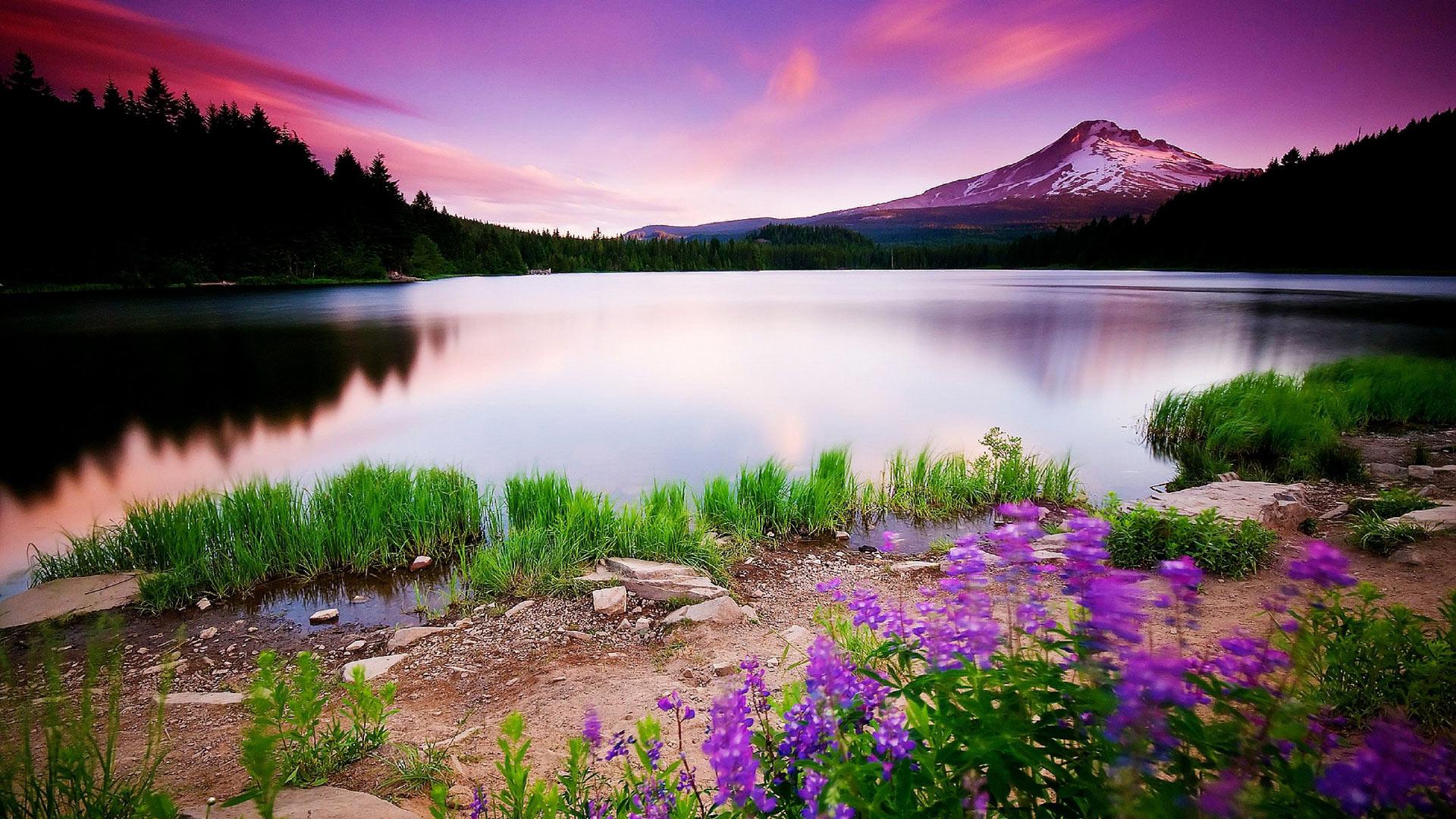озеро без смс