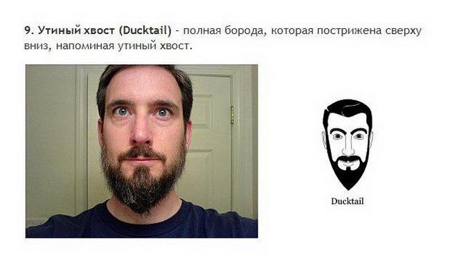 Борода и усы все разновидности