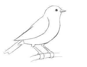 картинки рисунки простые карандашом