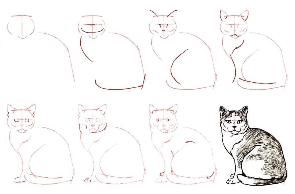 рисунки кота карандашом поэтапно для начинающих делать первая помощь