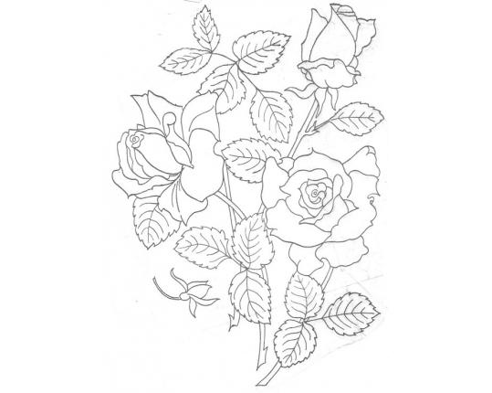 для срисовки цветов картинки