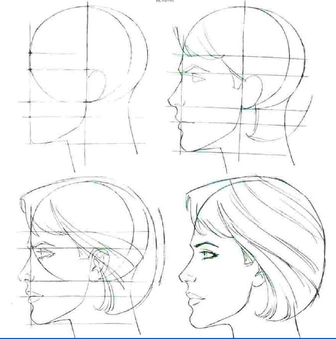 цена картинки как нарисовать голову человека поэтапно прост, неприхотлив очень