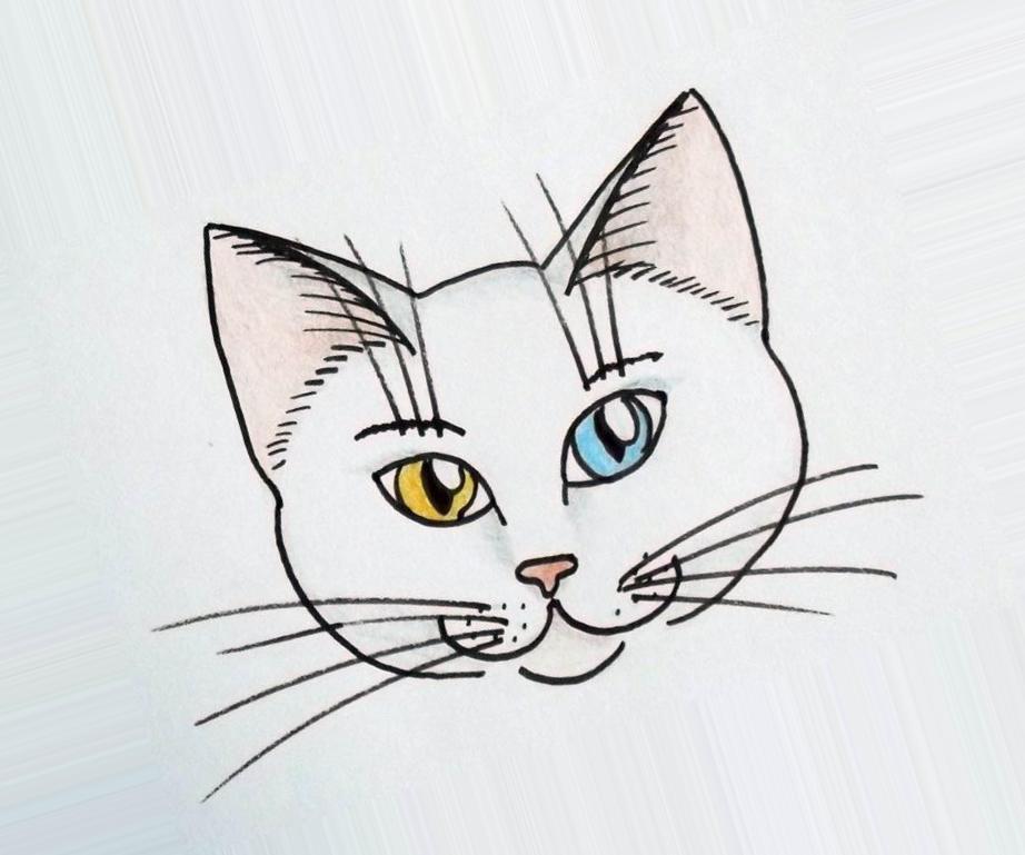 Мамам картинках, картинки котов для срисовки легкие