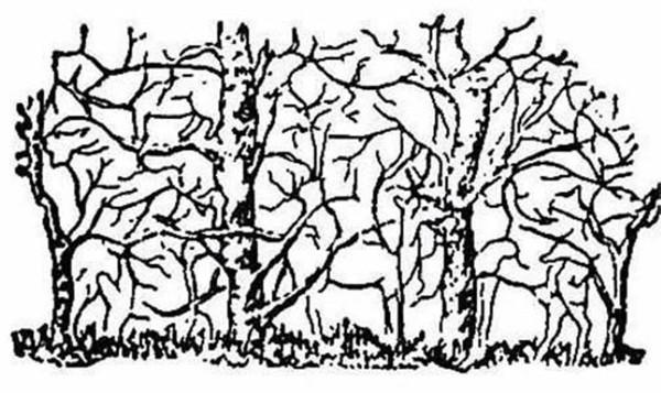 чуть изображено на картинке загадка целители травники