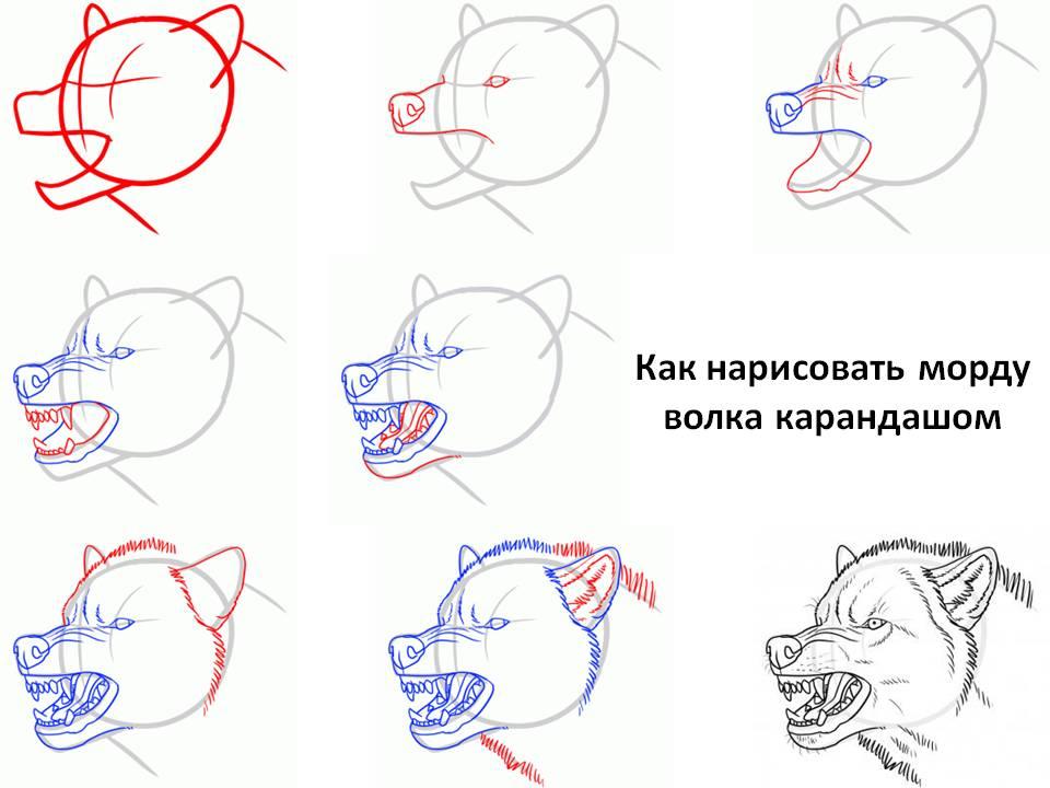 хоум кредит банк новосибирск адреса