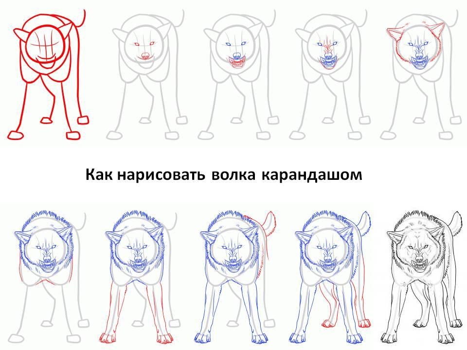 Рисунки фото волки