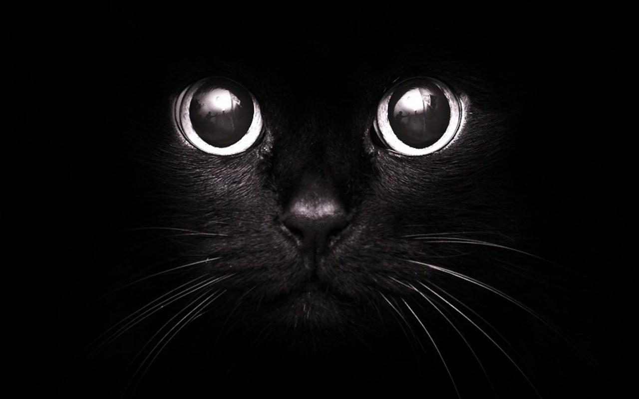 крутые черные картинки на аву