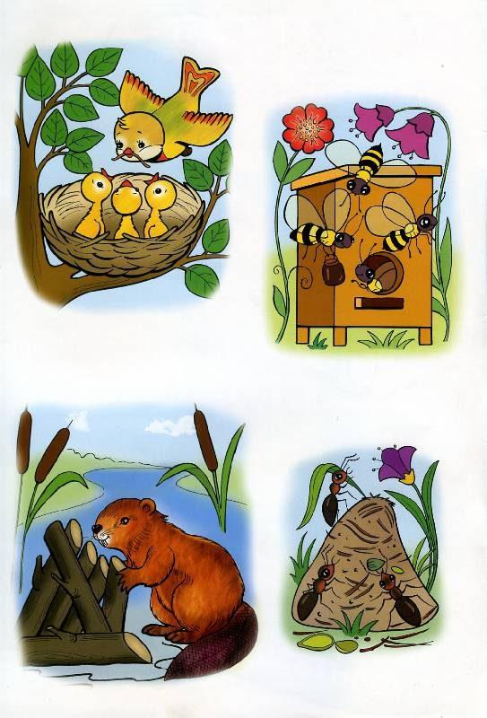 расскажем покажем, картинки и иллюстрации с изображением жилища животных что был