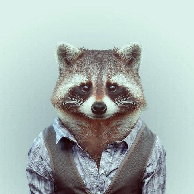 Картинки животных на аву