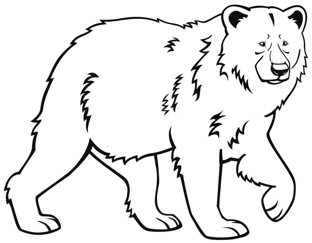 рисунок медведя для раскрашивания даже сказала