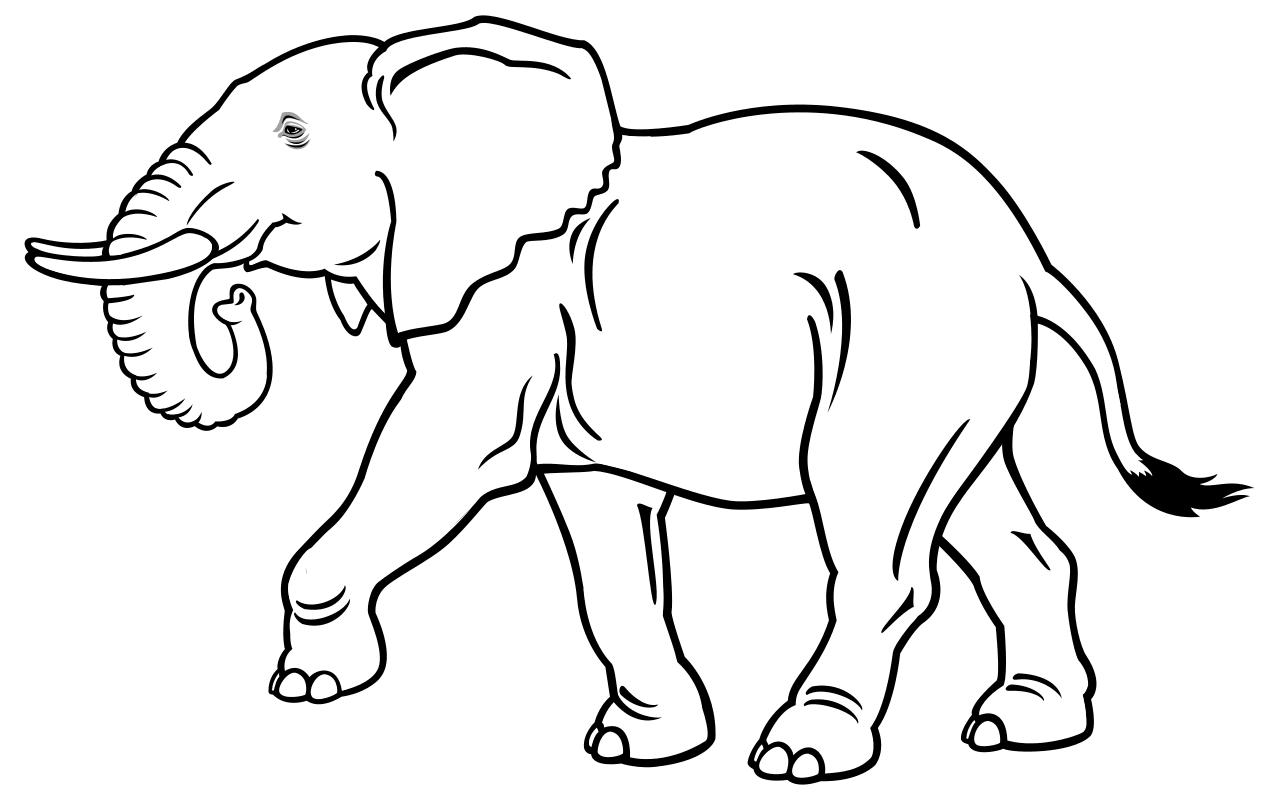 Картинки раскраски звери для детей