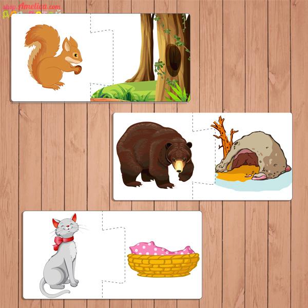 Картинки животных в квадратах виду