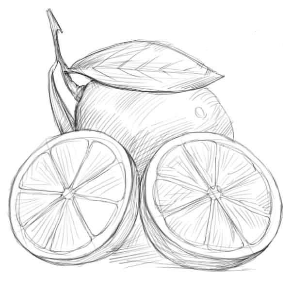 Рисунки карандашом для срисовки