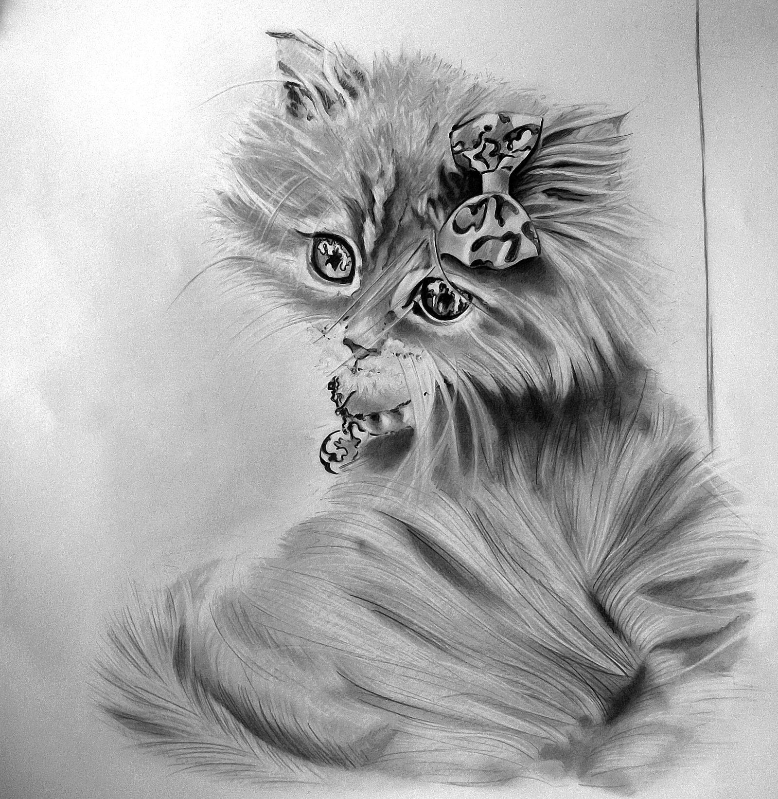картинки как рисовать карандашом на лджи точно они реальны