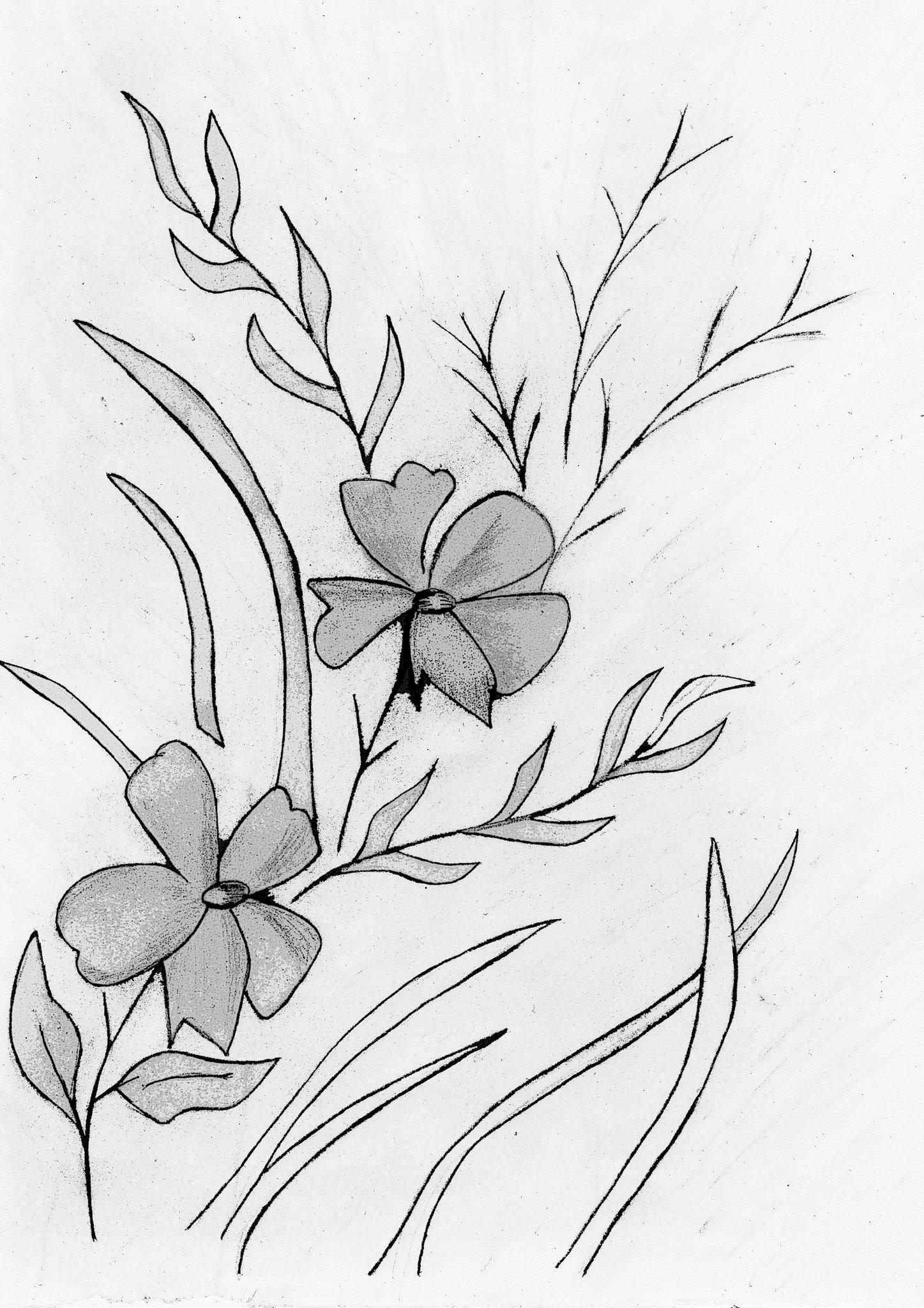 легкие рисунки цветов сделали яркий