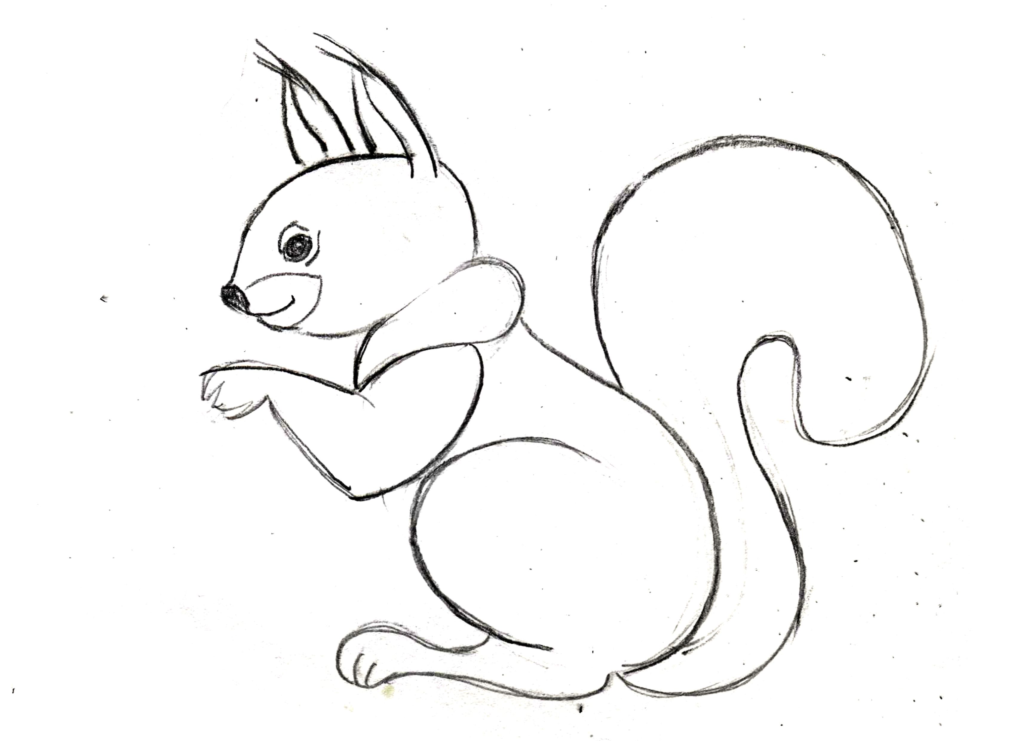 Картинки с животными нарисованные карандашом для детей, днем рождения