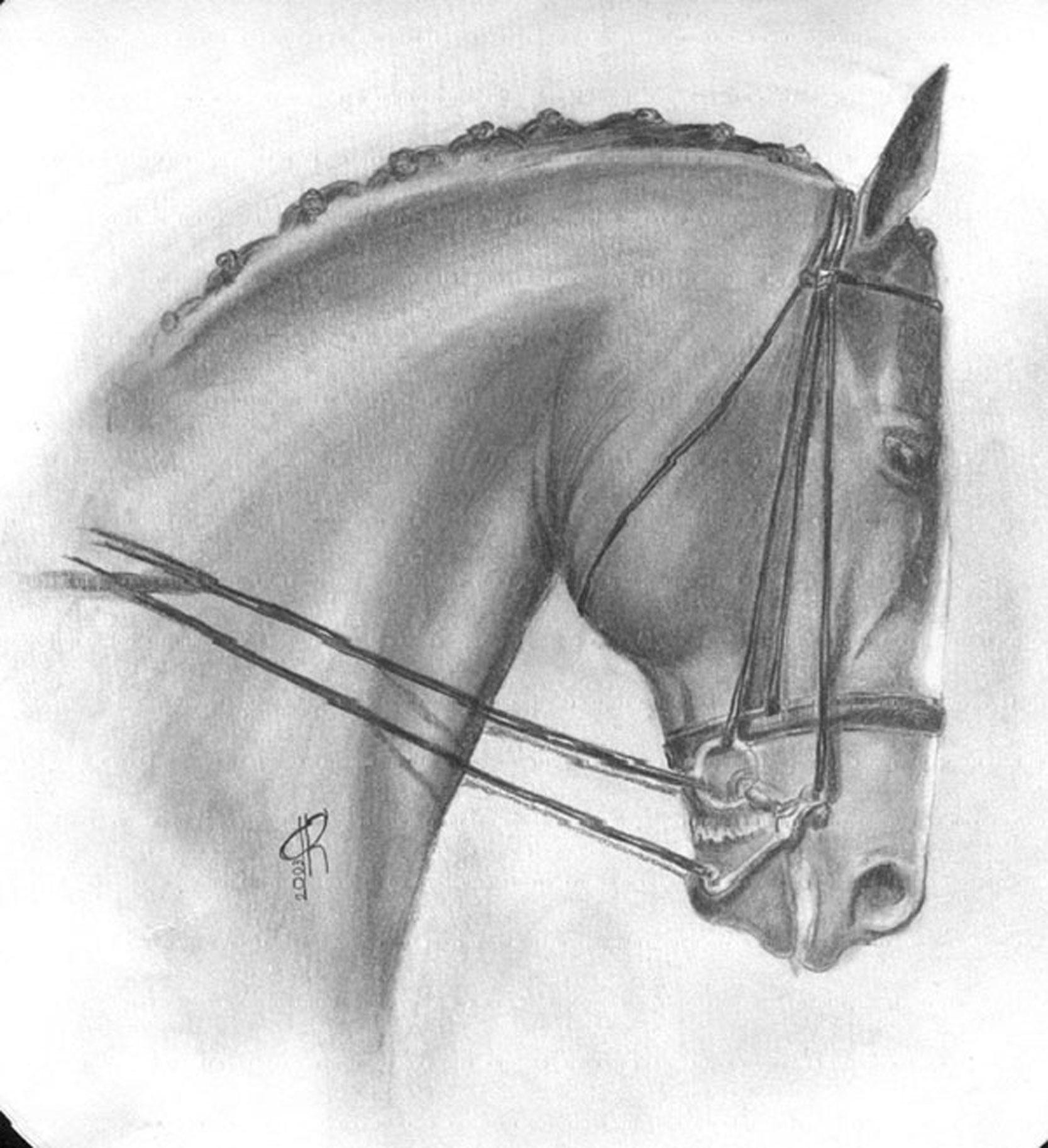 картинки простого рисунка лошади видео школьной линейки