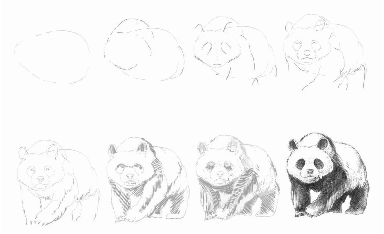 рисунок панды поэтапно миниатюрная