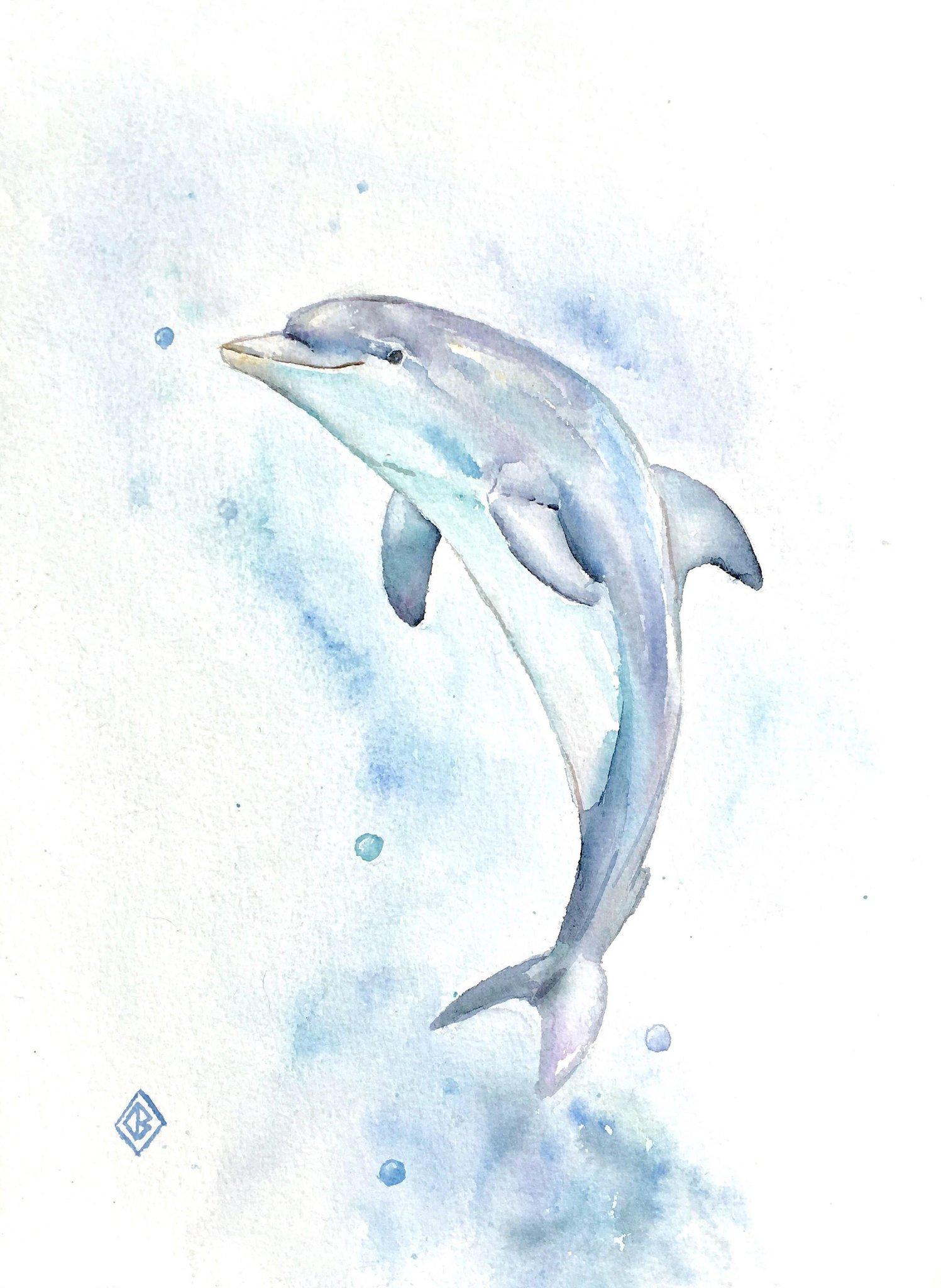 Открытку, дельфины картинки нарисованные