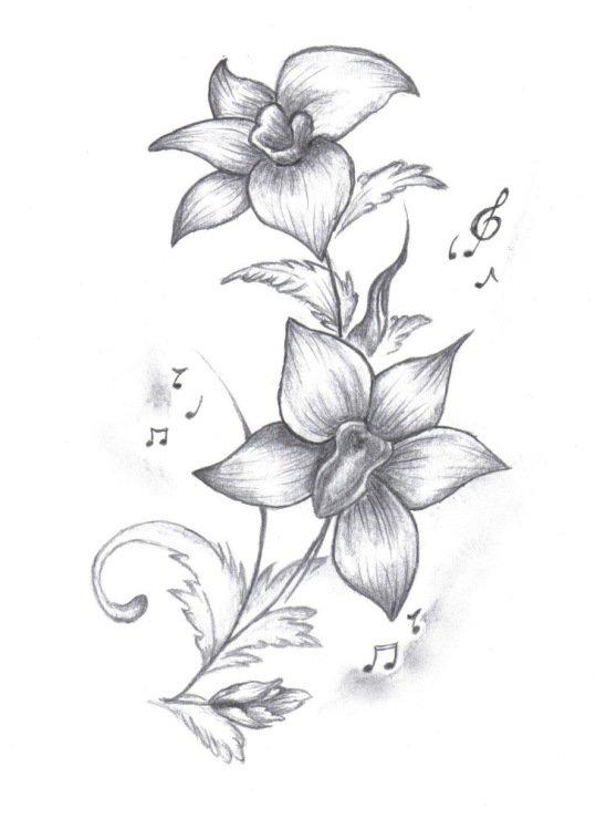 Красивые цветы рисунок карандашом, добрым