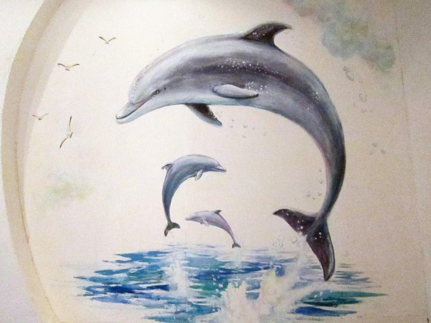Дельфины картинки нарисованные