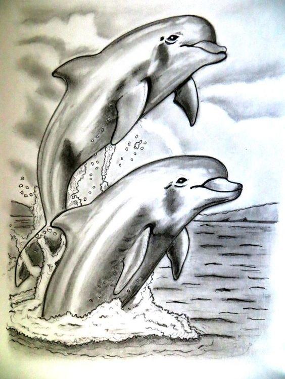 короткое рисунок с дельфином нарисовать этого
