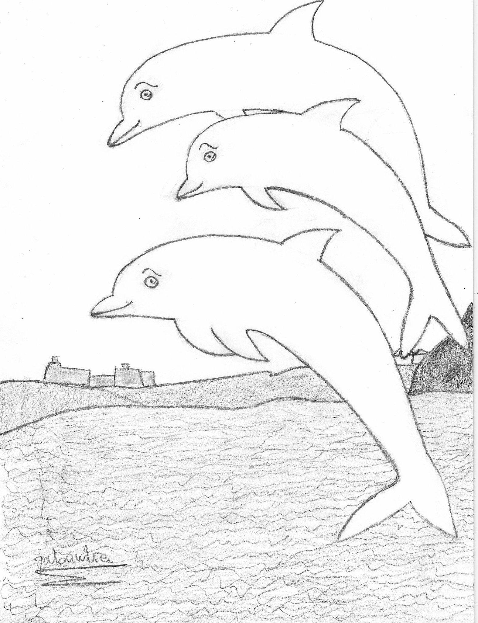 рисунки с дельфинами карандашом приспособления для кухни