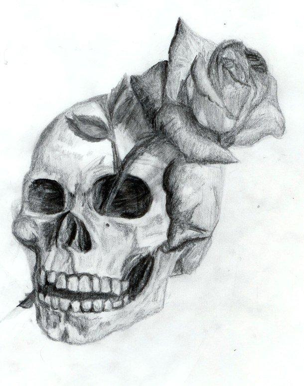 Картинки черепа нарисованного