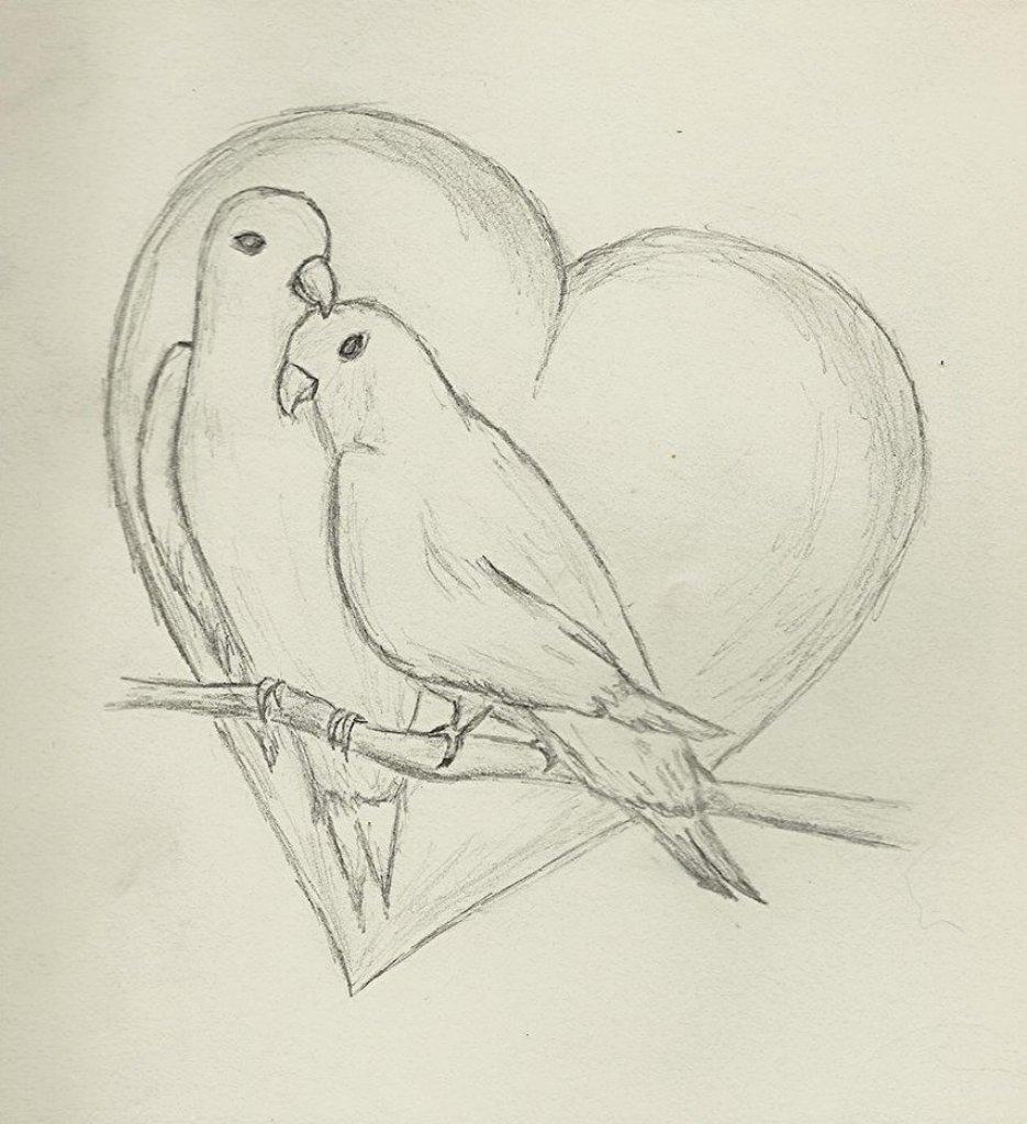 Рисовать картинки карандашом для начинающих легкие и интересные птички