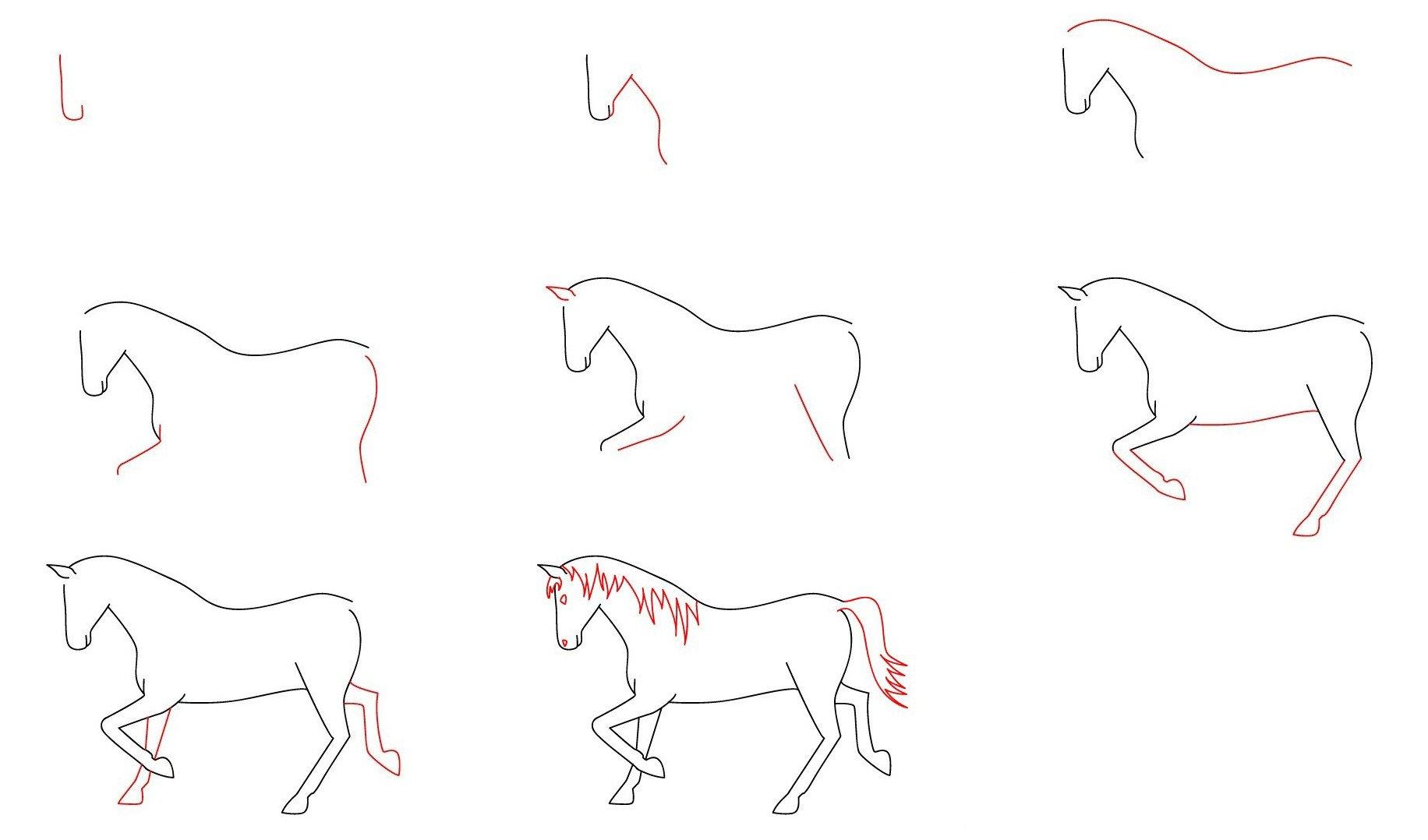 Картинки лошади карандашом для начинающих, гает байрам
