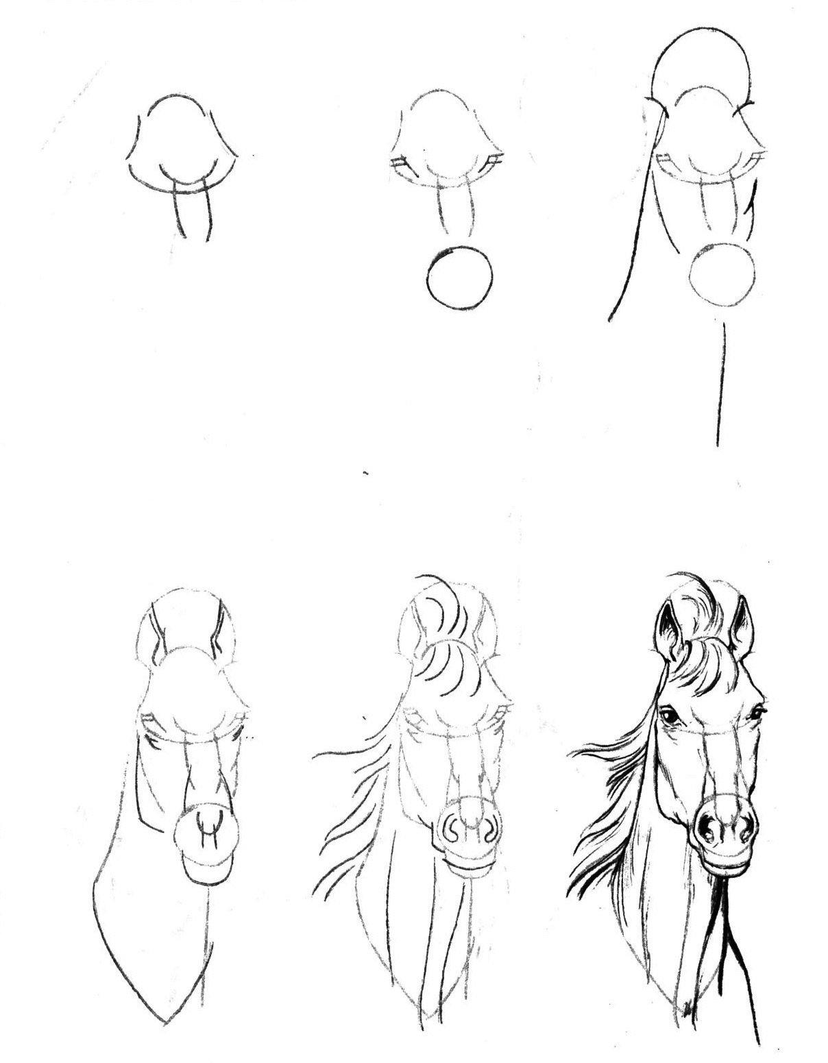 кашин уроки рисования карандашом с нуля в картинках изображение
