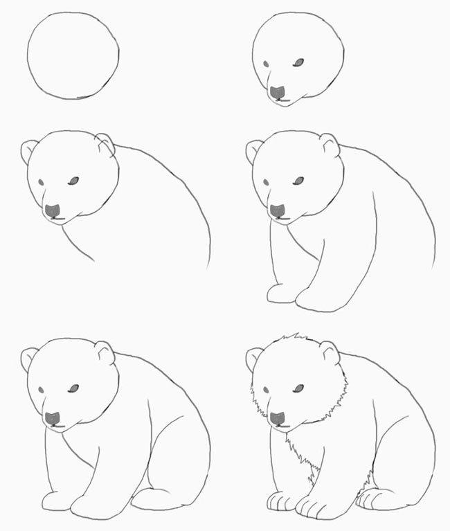 Ландыши марта, как нарисовать мишку картинку