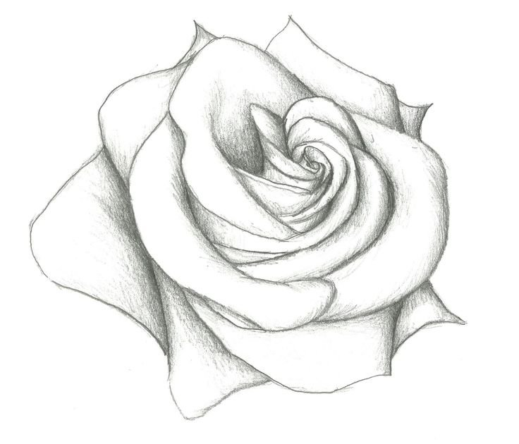 Красивые картинки для рисовки