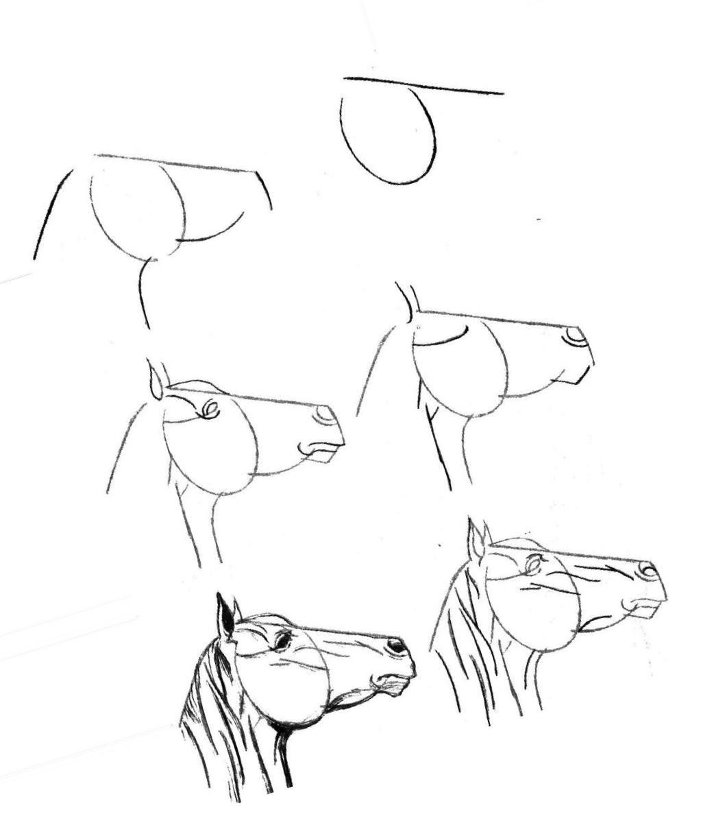 Прикольные картинки карандашом для начинающих поэтапно картинки легкие
