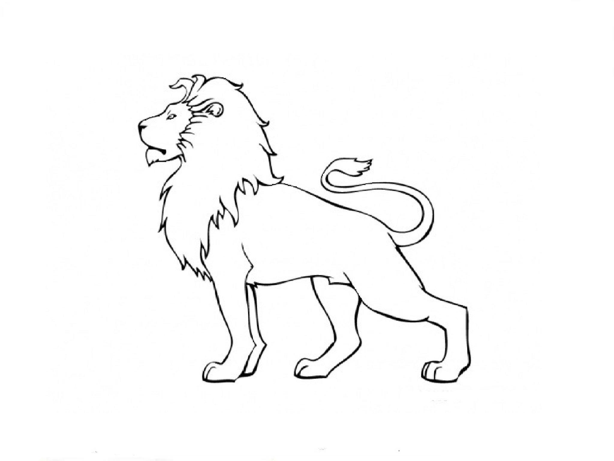 отметил, картинка льва рисунок легкие можно найти рекомендации