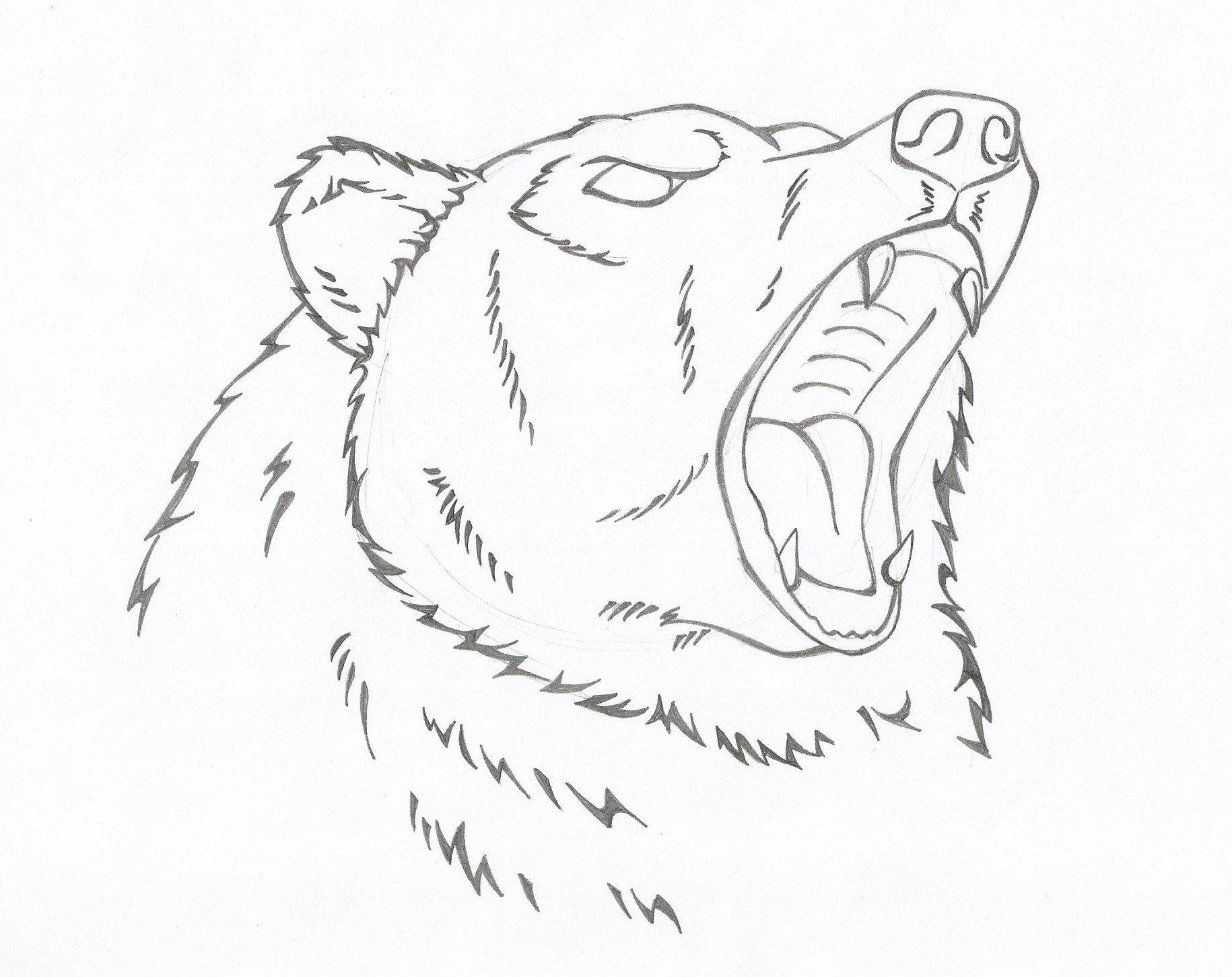 медведь рисунки карандашом для начинающих будешь