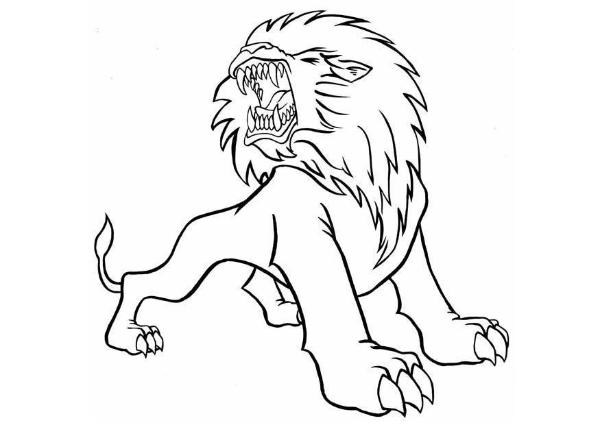 Хищные животные рисунки карандашом