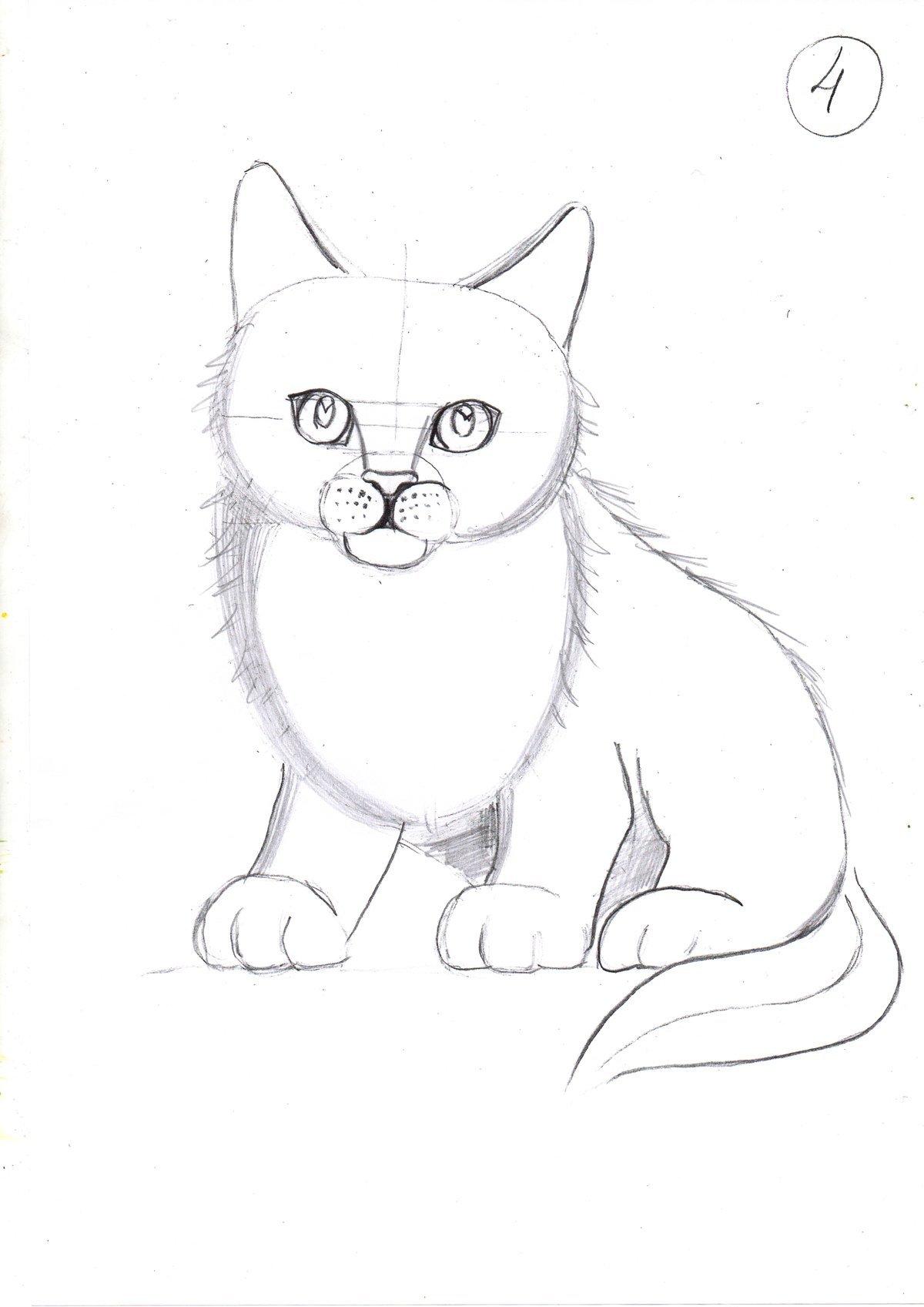 картинки как рисовать карандашом на лджи признанию, свой