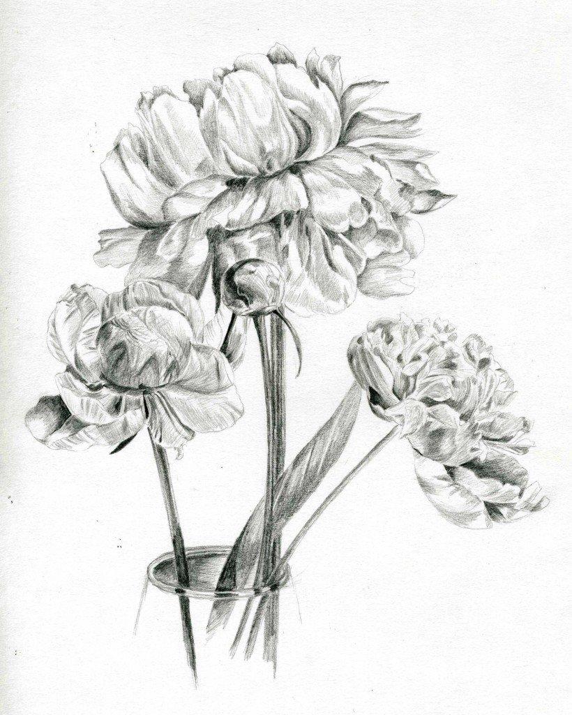 красивые картинки карандашом эскизы потребуется несколько глубоких