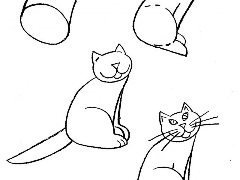 Картинка, детские рисунки кошек карандашом