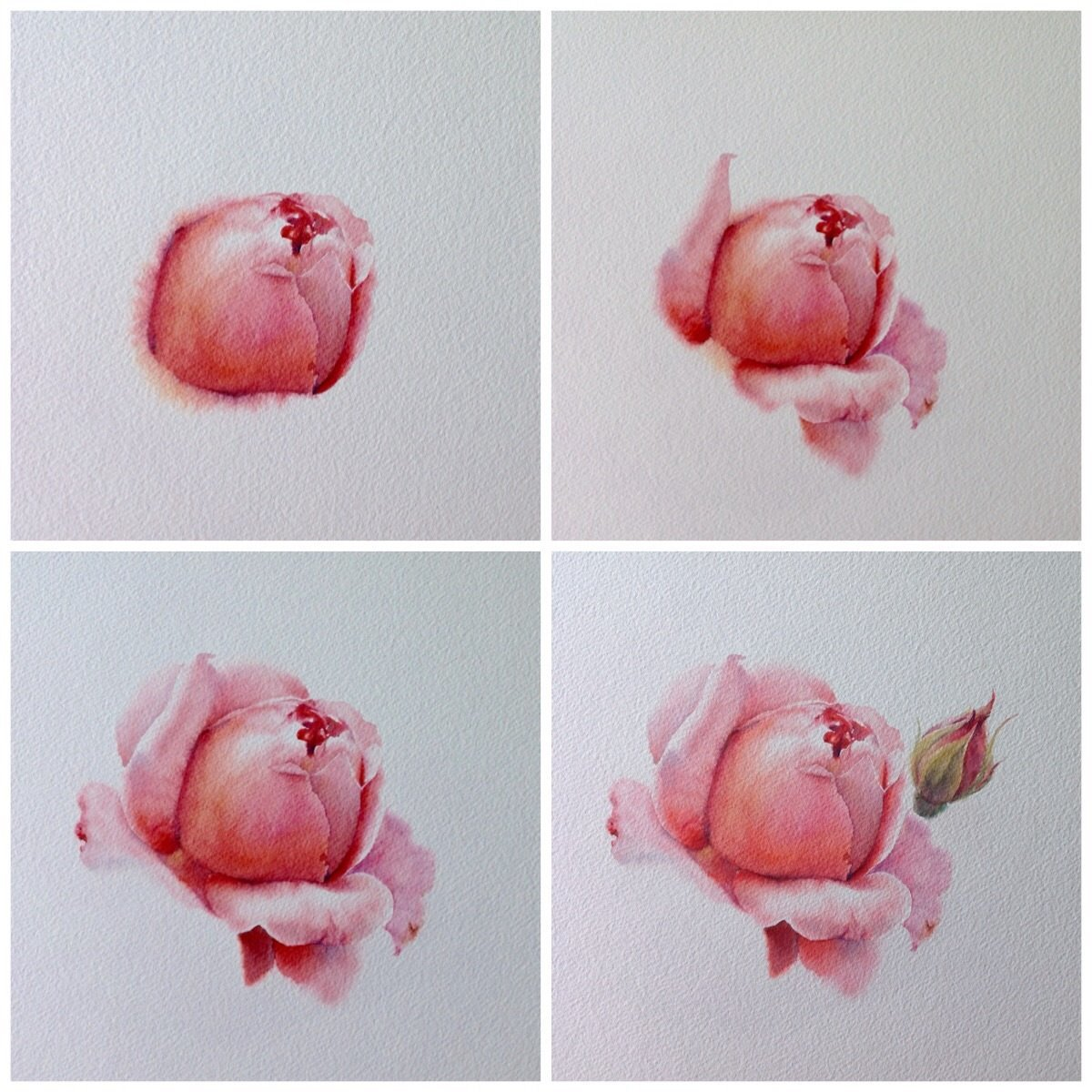 Рисунки акварелью для начинающих пошагово фото