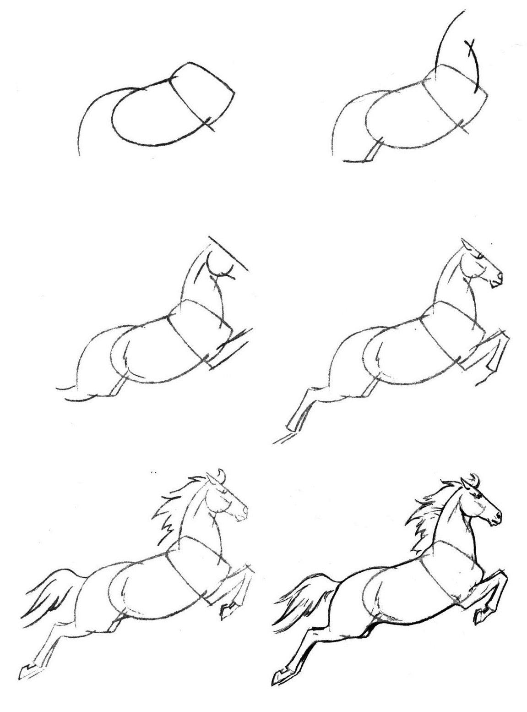 Красивые рисунки пошагово для начинающих карандашом